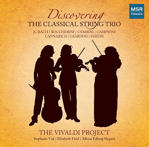 DiscoveringStringTrio